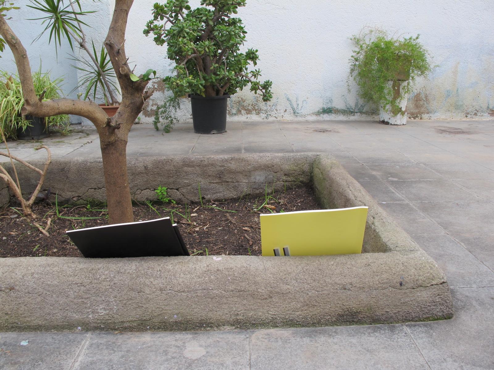 Plantar llibres
