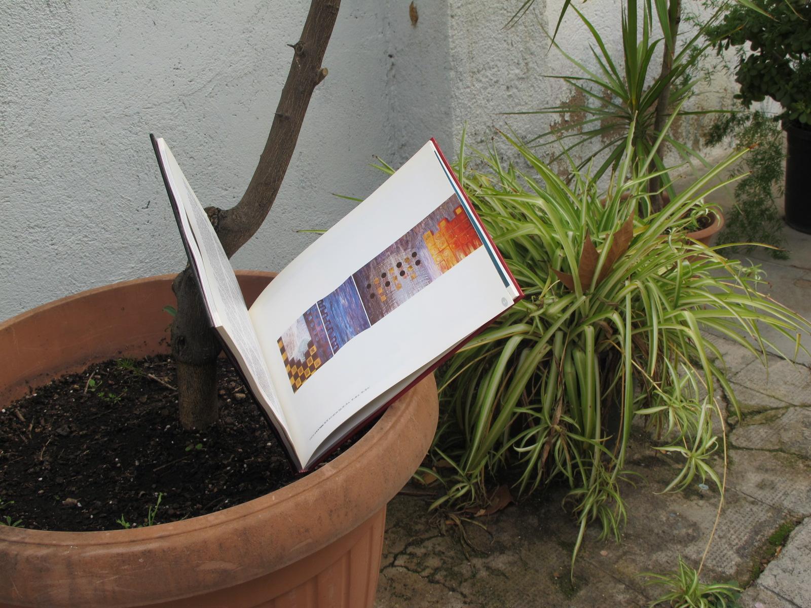 Plantar llibres, regar-los i que creixin (una flor)
